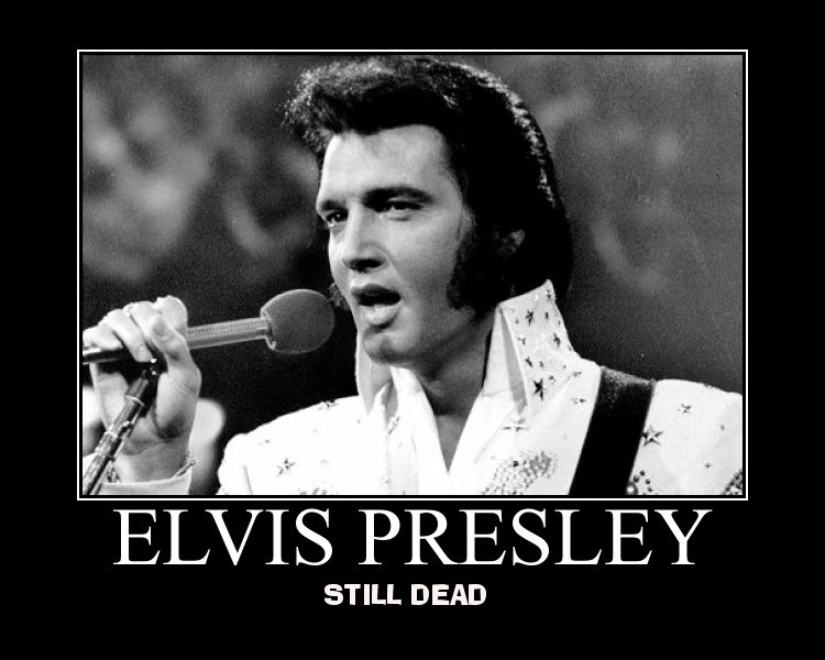 elvis presley elvispresley elvis_presley the king rock and