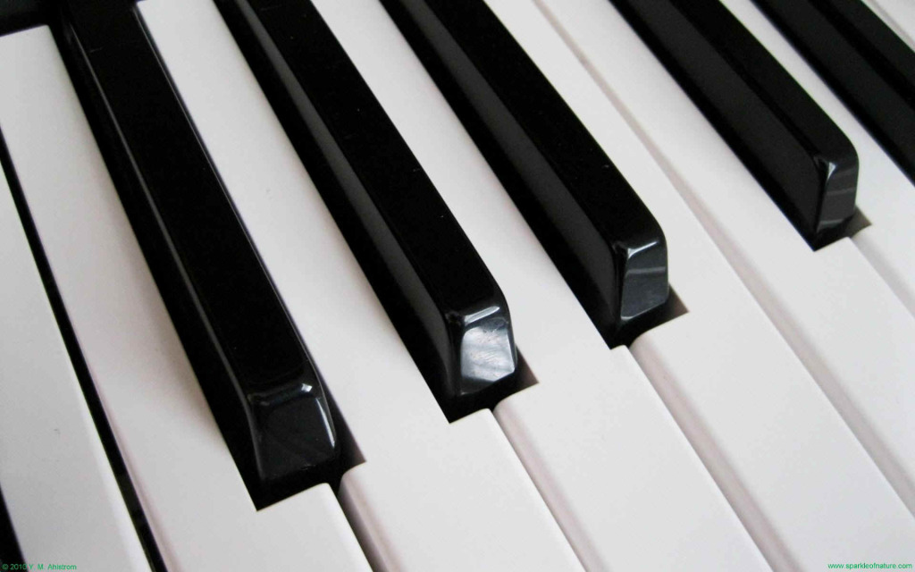 Piano Hd Wallpapers Free Download 5 1024 640